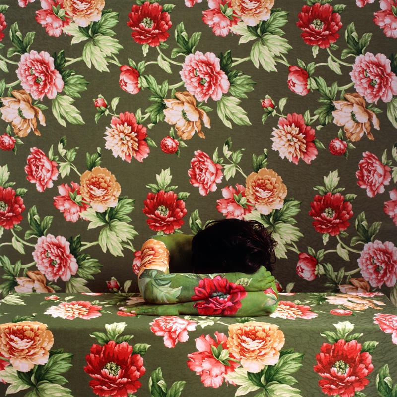 Dreaming-Rose-2009
