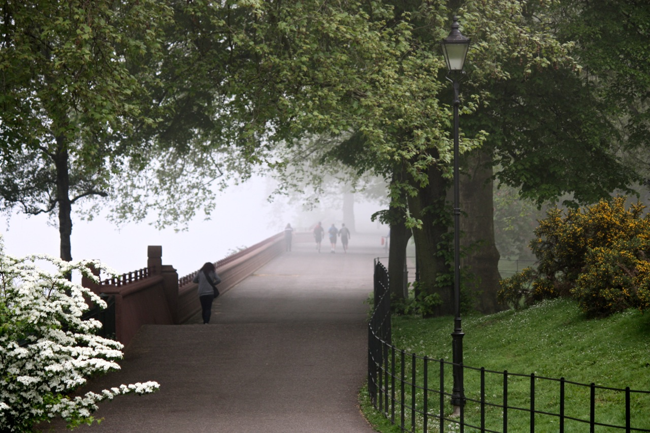 London fog and a morning walk little observationist charles dickens writes in bleak house fog everywhere solutioingenieria Choice Image