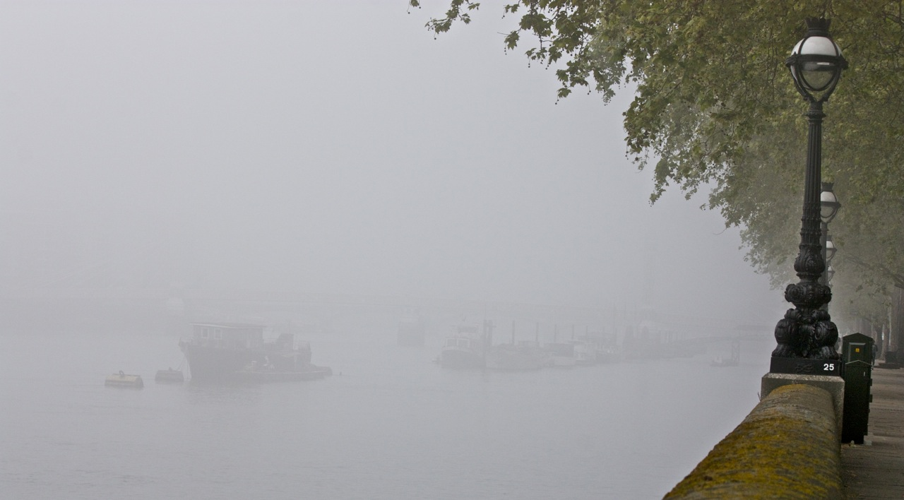 London fog and a morning walk little observationist but back to a positive note it was a real treat to wake up with time for a leisurely walk on such a stunning morning if you every wake up in london solutioingenieria Choice Image