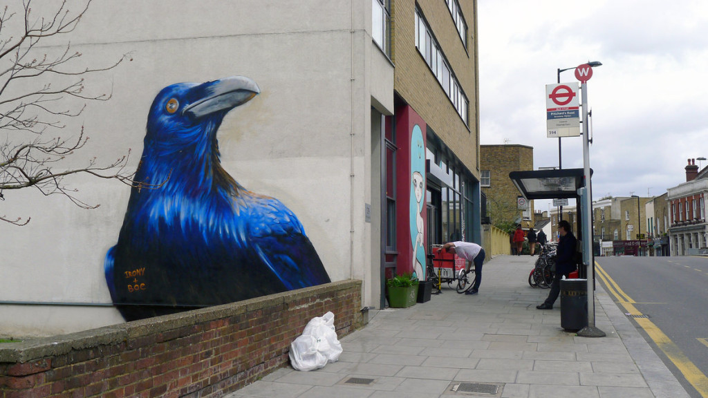 hackney_crow_by_whoam_irony-d62c3t4