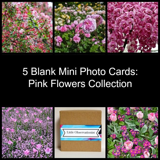 Little Observationist Mini Photo Cards - Pink Flowers Collection