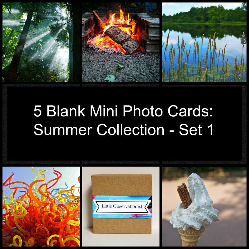 Little Observationist Mini Photo Cards - Summer Collection - Set 1