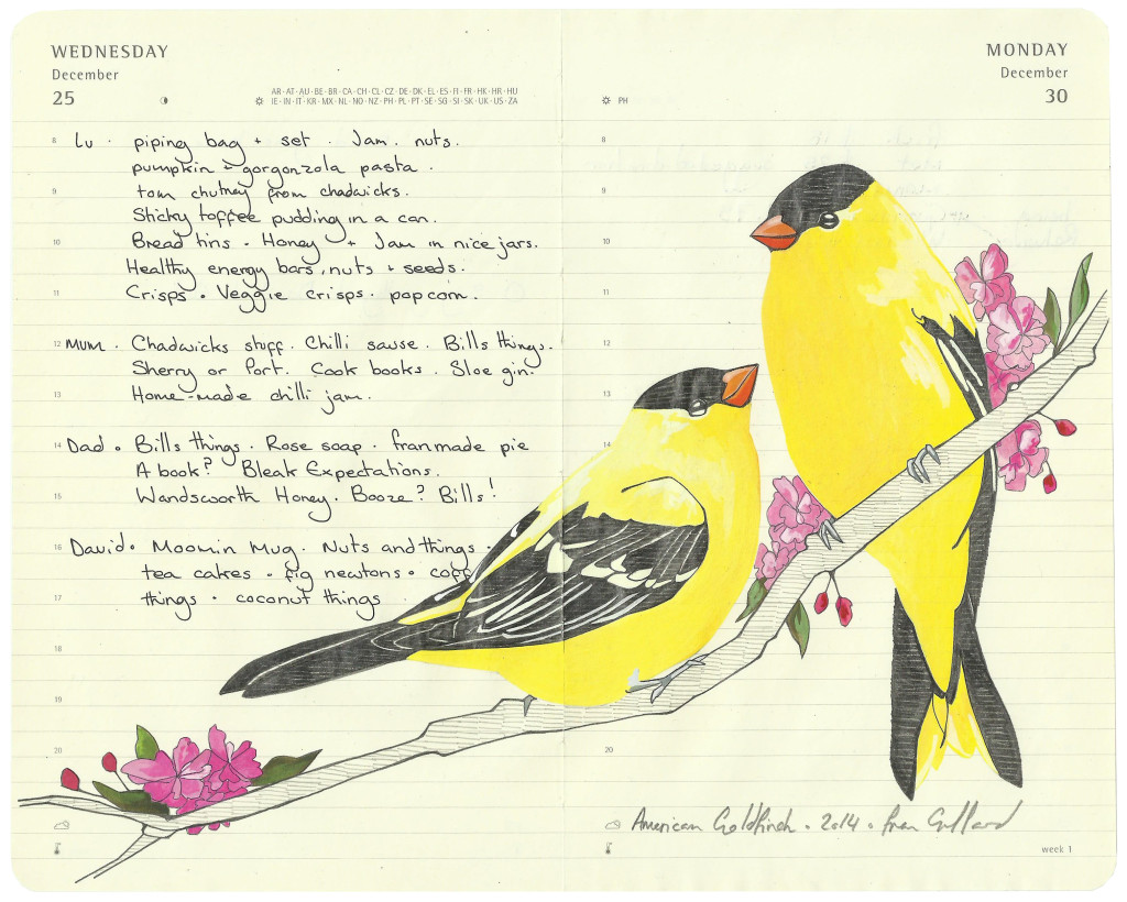 American Goldfinches - - Fran Giffard Interview, Little Observationist