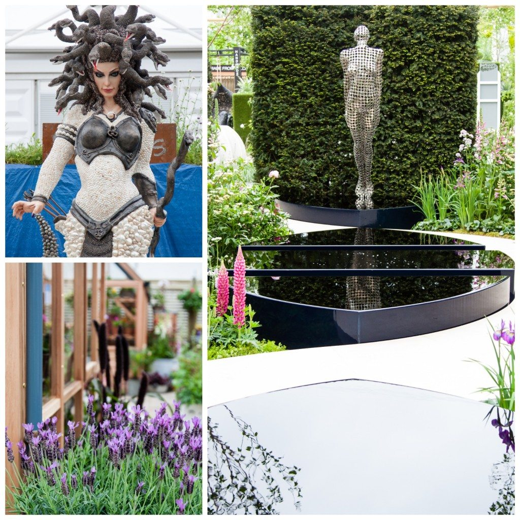 Chelsea Flower Show 2015 by Stephanie Sadler, Little Observationist2