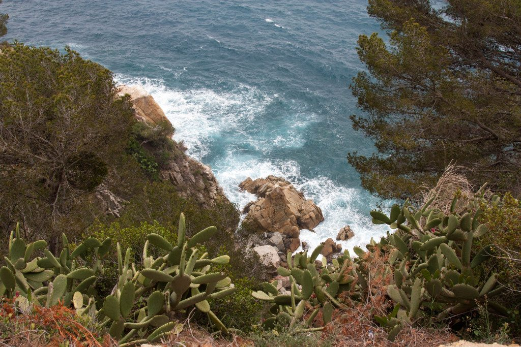 Lloret de Mar by Stephanie Sadler, Little Observationist