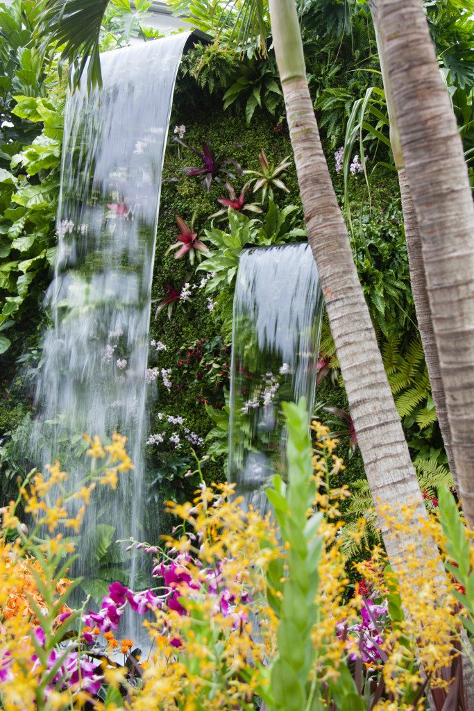 Chelsea Flower Show 2015 by Stephanie Sadler, Little Observationist