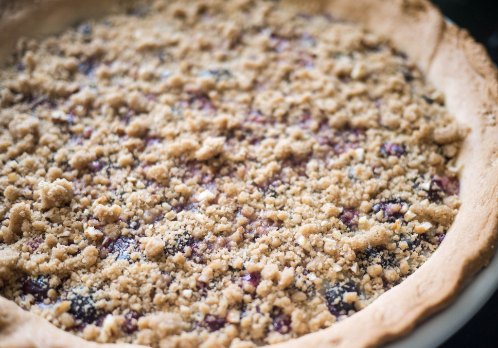 Blueberry Custard Pie, Little Observationist