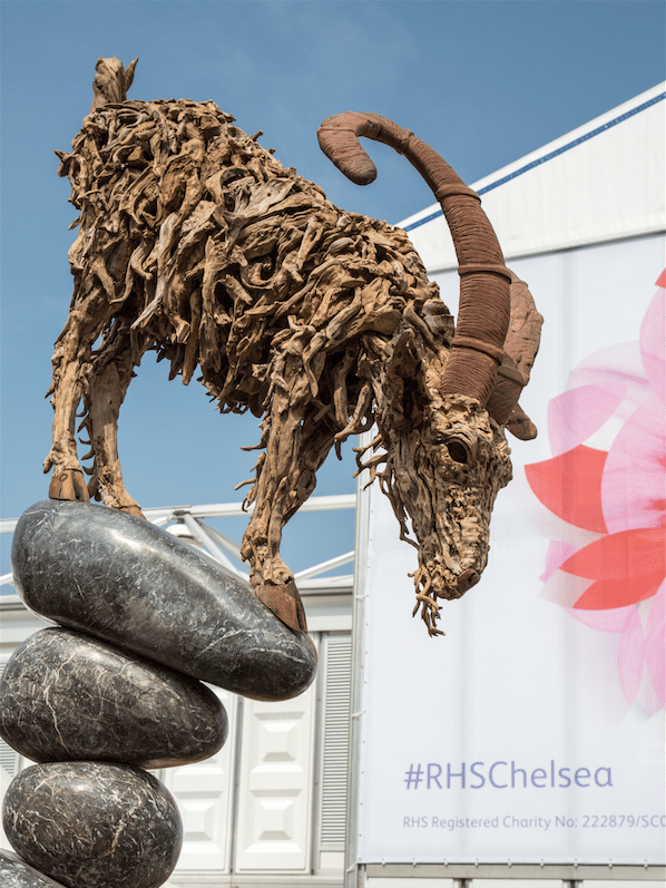 Chelsea Flower Show by Stephanie Sadler, Little Observationist