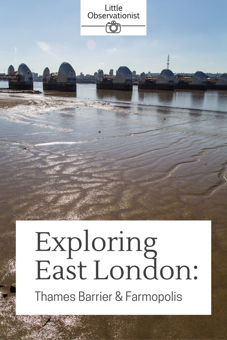 The Thames Barrier and Farmopolis by Stephanie Sadler, Little Observationist