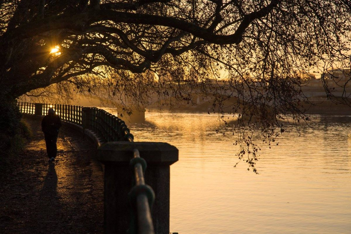 A London Winter Sunrise in Bishops Park by Stephanie Sadler, Little Observationist