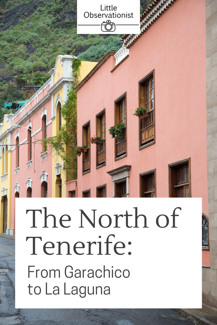 North of Tenerife by Stephanie Sadler, Little Observationist